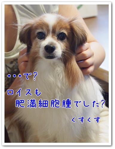 d0013149_07834.jpg