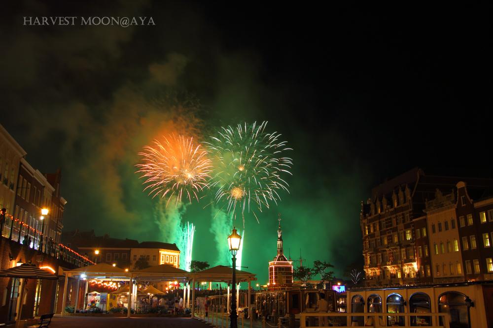 Fireworks_b0208495_08541934.jpg