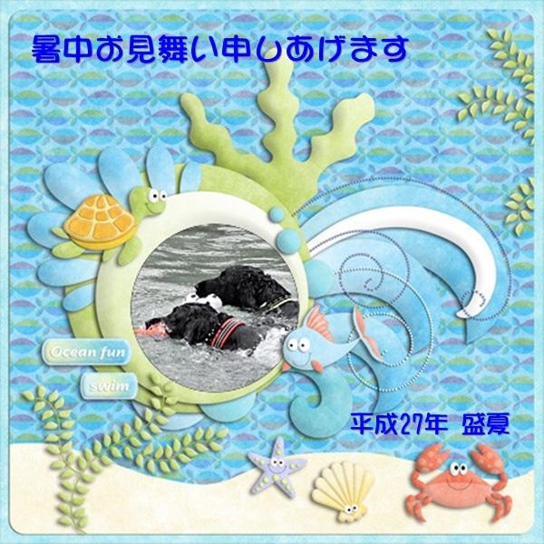 f0176499_18240086.jpg