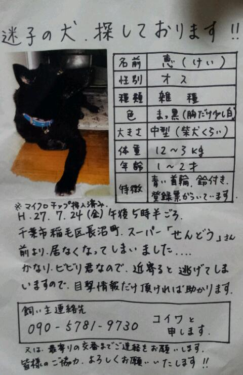 【拡散希望・迷子】7月24日 千葉市より行方不明_f0242002_2342391.jpg