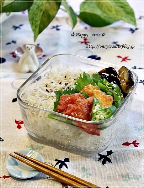 しらす丼弁当とプレッツェル♪_f0348032_18361476.jpg