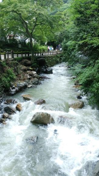 大雨の箕面滝道_d0202264_09035110.jpg