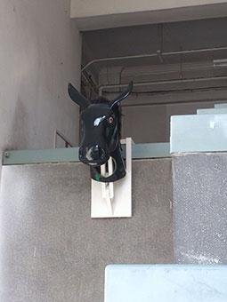 ニシハラ★ノリオ カブレル展示_e0233768_15215651.jpg