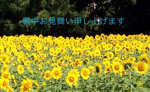 f0163616_15481059.jpg