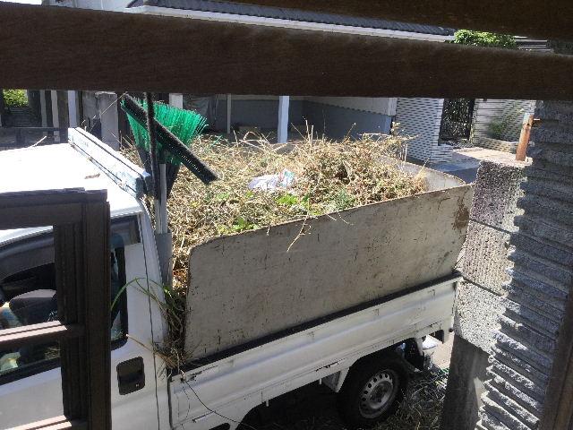 草刈り・剪定・除草剤散布・ごみ処理終了_f0031037_18374829.jpg