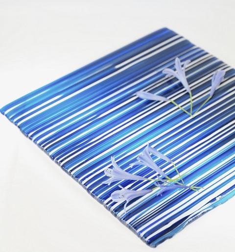 雅羅素の青アガパンサス_e0241944_222758.jpg
