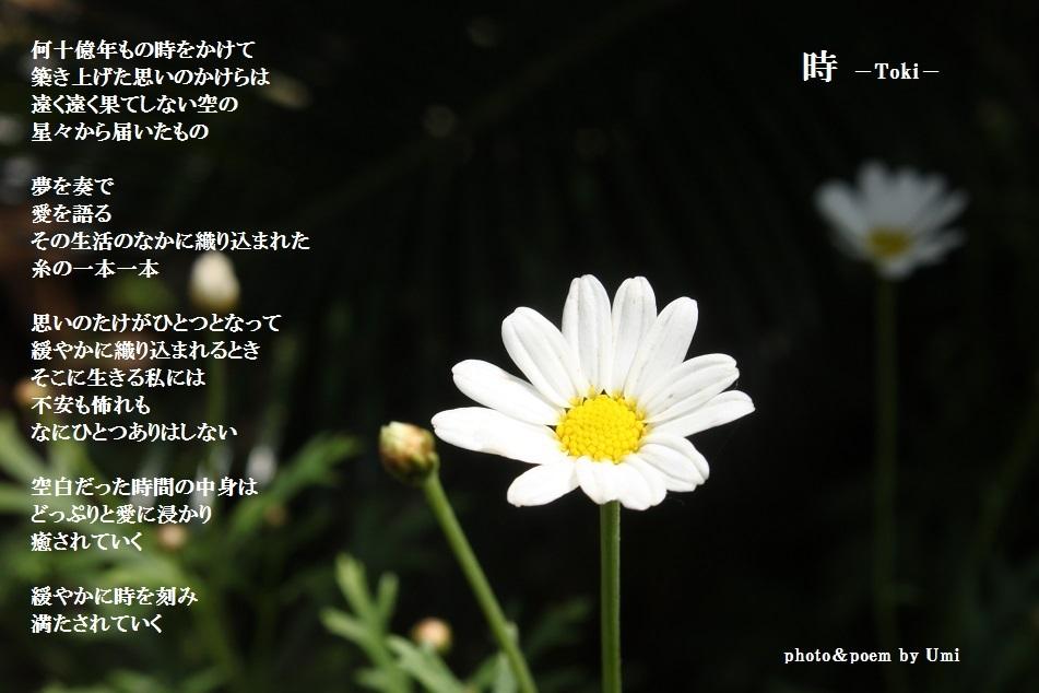 f0351844_19012154.jpg