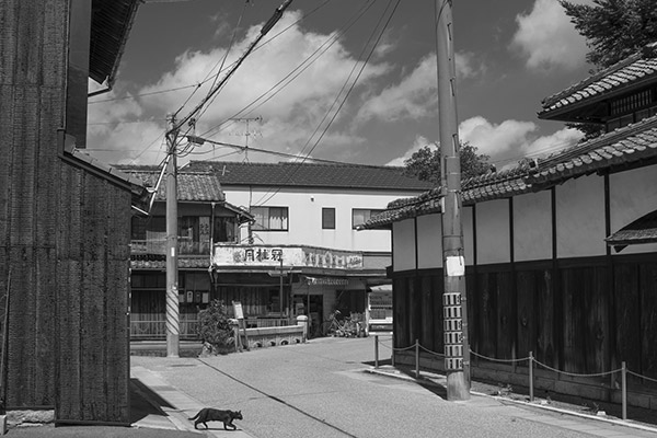2015/07/28 岡山、西大寺散歩:その1_b0171364_10283722.jpg