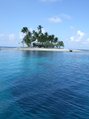 キミシマ環礁で記念ダイブ☆     JEEP IS._e0184067_18324772.jpg