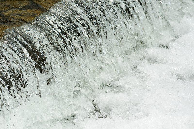 鴨川のサギ_f0032011_1956656.jpg