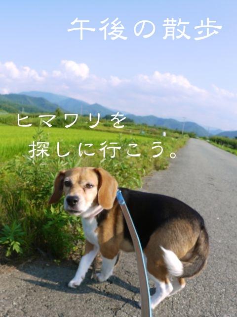 c0190940_2012318.jpg