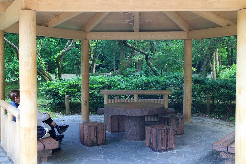 京都植物園内を散策20150625_e0237645_026866.jpg