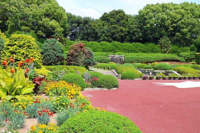 京都植物園内を散策20150625_e0237645_0275319.jpg