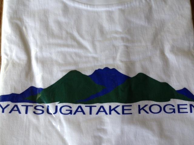 オリジナルTシャツ_f0019247_11351123.jpg