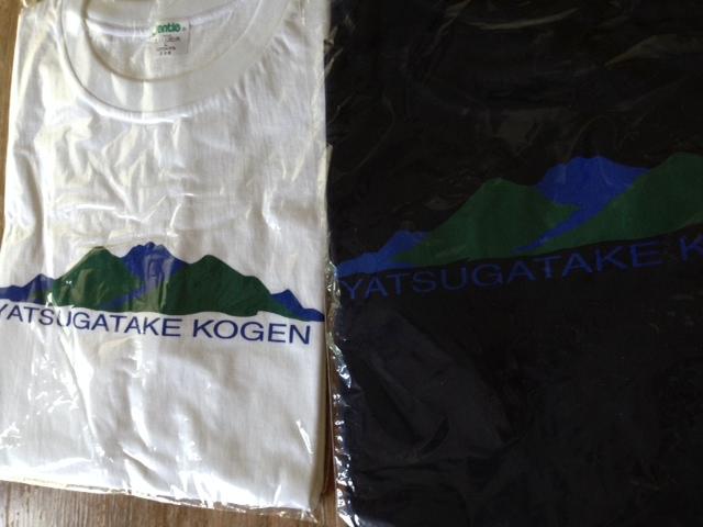 オリジナルTシャツ_f0019247_1151132.jpg