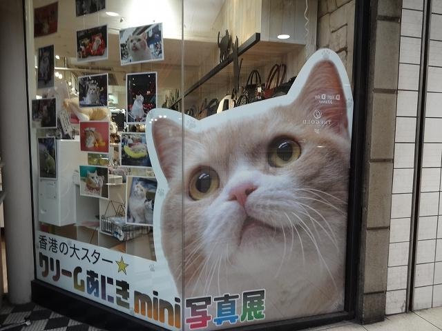 クリームあにき in 大阪_b0248150_20120887.jpg