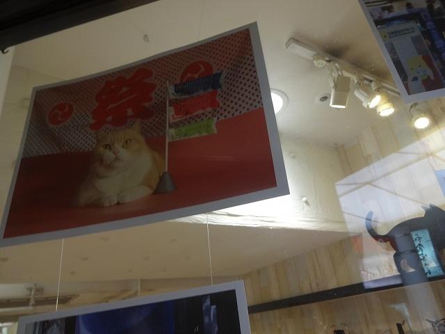 クリームあにき in 大阪_b0248150_20303307.jpg