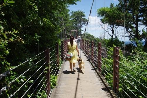 【桃旅 #006】憧れのリゾートで夏休み@レジーナリゾート富士Suites & Spa_c0364176_13502371.jpg