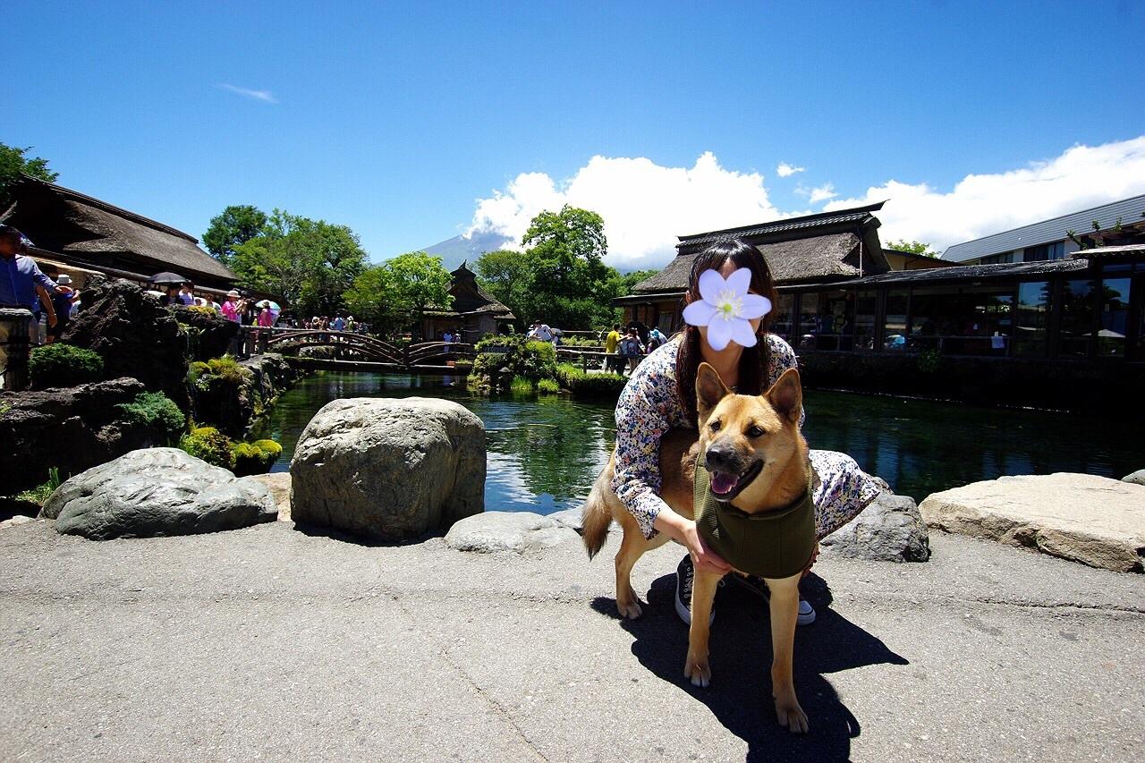 【桃旅 #006】憧れのリゾートで夏休み@レジーナリゾート富士Suites & Spa_c0364176_18343748.jpg