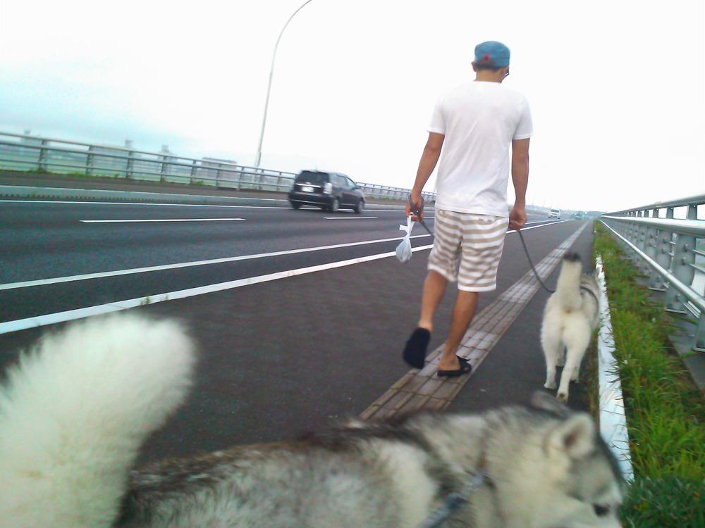 こうめちゃんとお散歩 (^o^)_c0049299_223650100.jpg