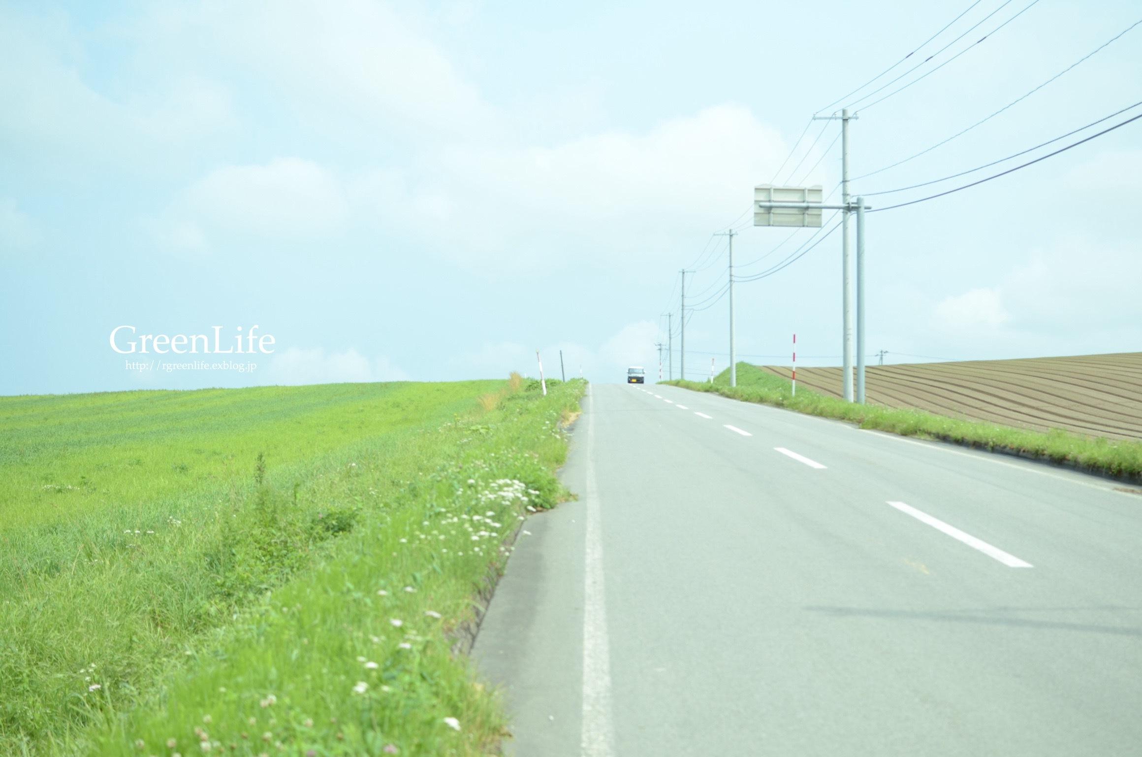 道_f0321522_19300436.jpg