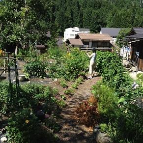 世界遺産の合掌造り大田屋さんに泊まる~白川郷を訪ねて~_b0211926_13471493.jpg