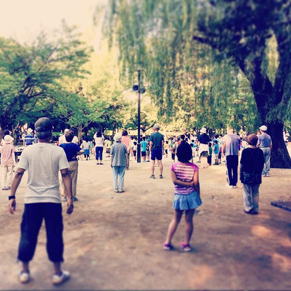 妙正寺公園 / iPhone 6_c0334533_18443858.jpg