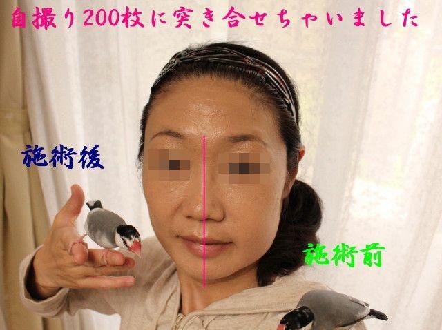 c0365734_23011592.jpg