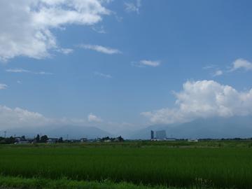 夏の匂い_a0014840_22444487.jpg