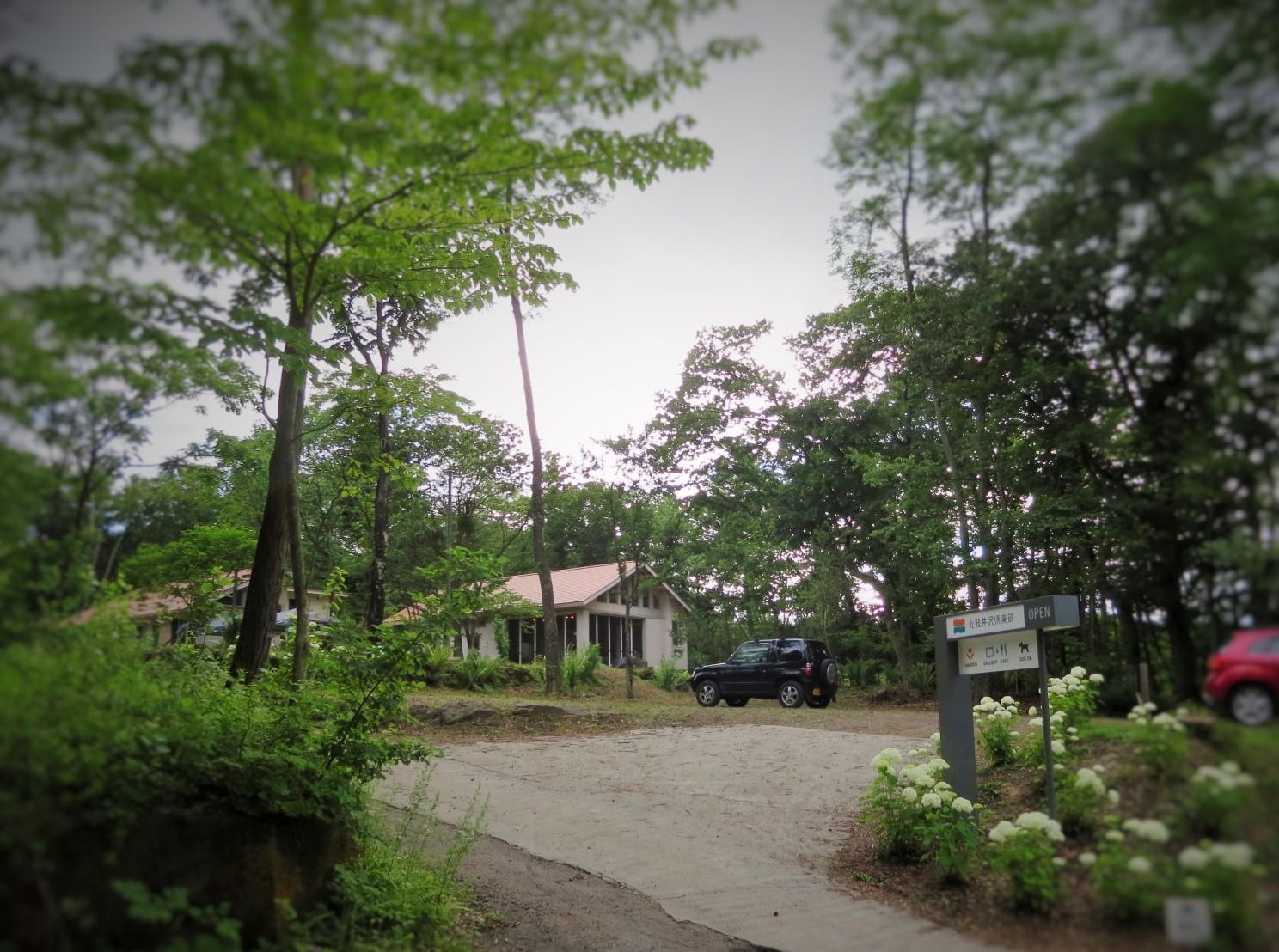 夏だけのビストロ~北軽井沢倶楽部のディナー_f0236260_2134274.jpg