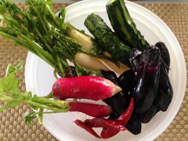 小さな夏野菜たちで・・_b0236665_15160985.jpg