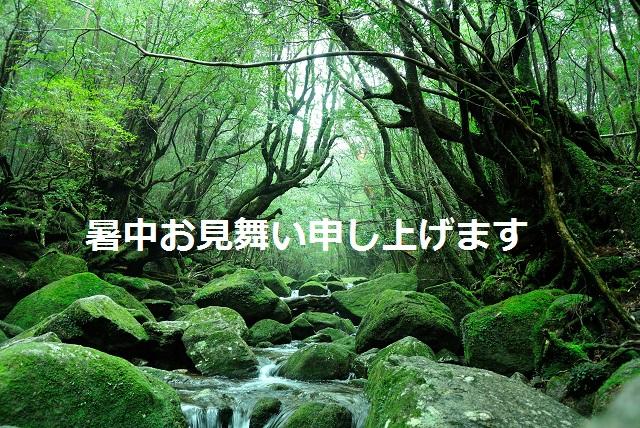 f0046614_14393970.jpg