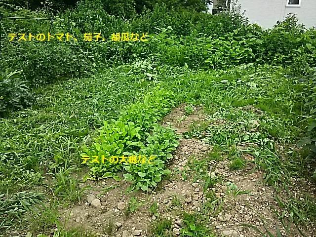 f0227321_1730212.jpg