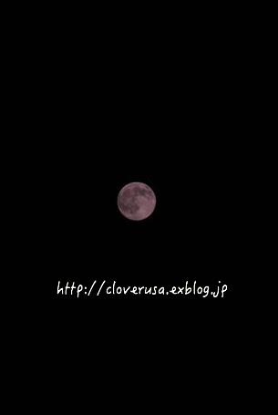 c0327528_14131425.jpg