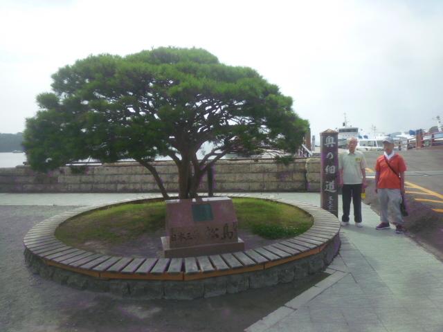 松島シリーズ⑥_b0217741_19202942.jpg