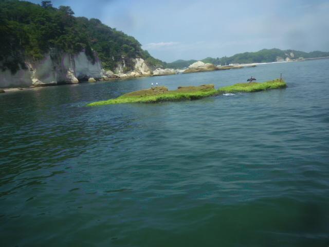 松島シリーズ⑩_b0217741_21570954.jpg