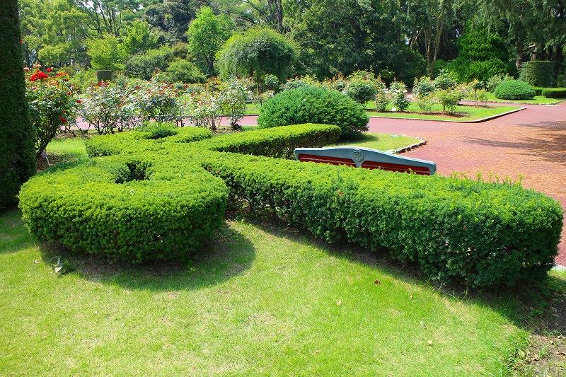 夏の花真っ盛りの【京都植物園】20150625_e0237645_9183682.jpg