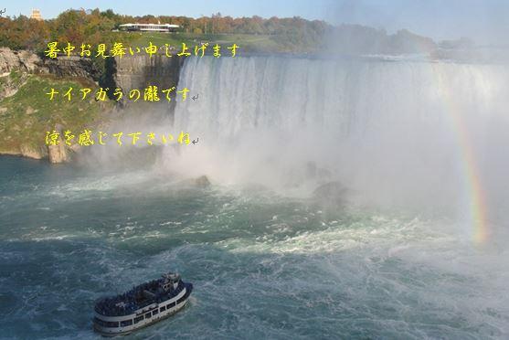b0061108_5113611.jpg