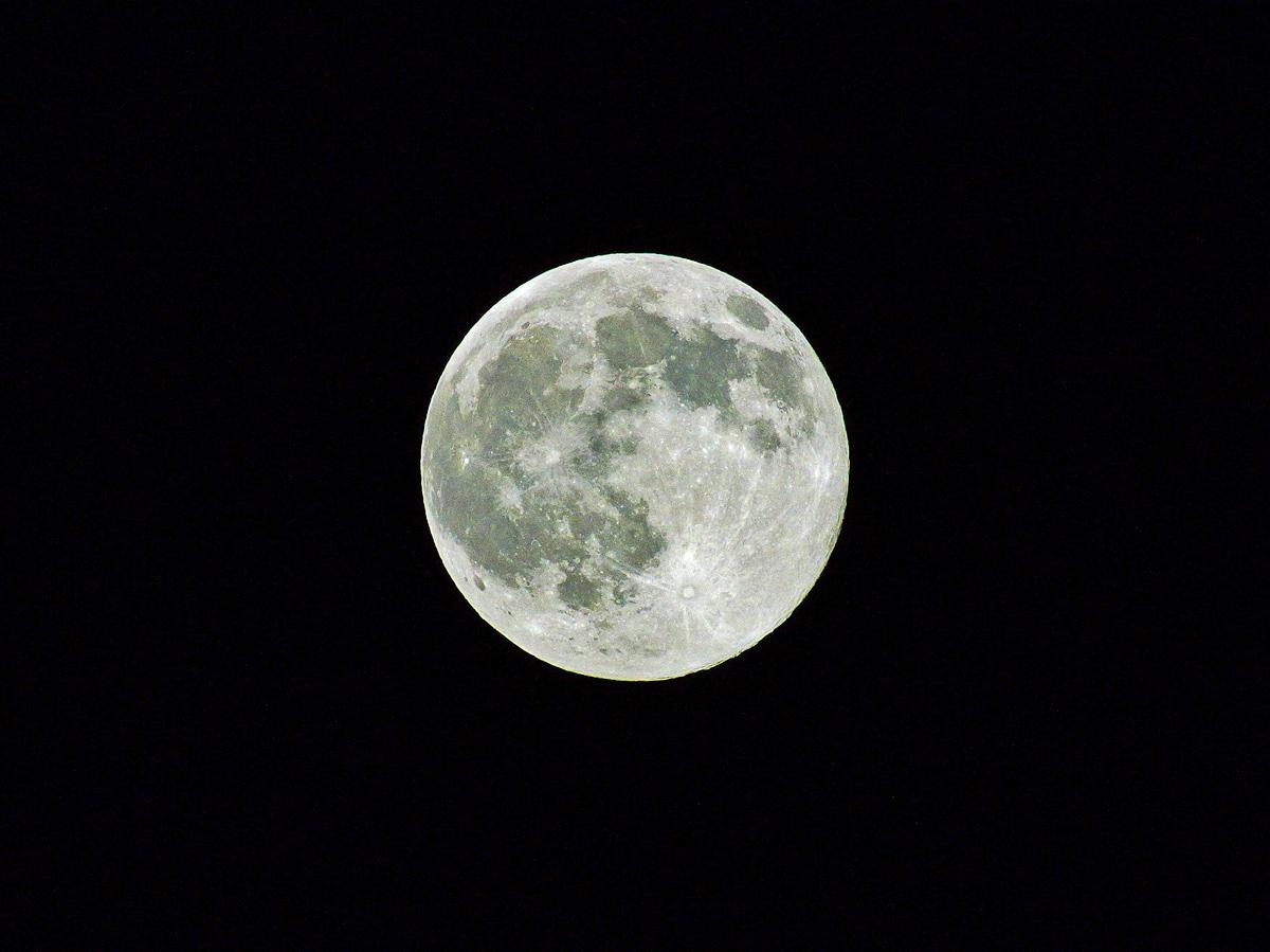 Blue Moon。_b0044115_11353643.jpg