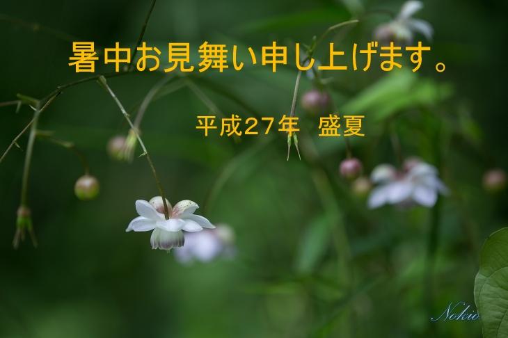 f0173817_924462.jpg