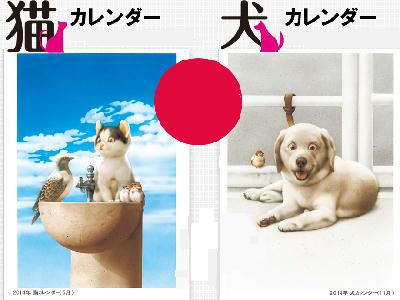 8月の 犬さん ・ 猫さん・・・!?_c0328479_12102726.jpg