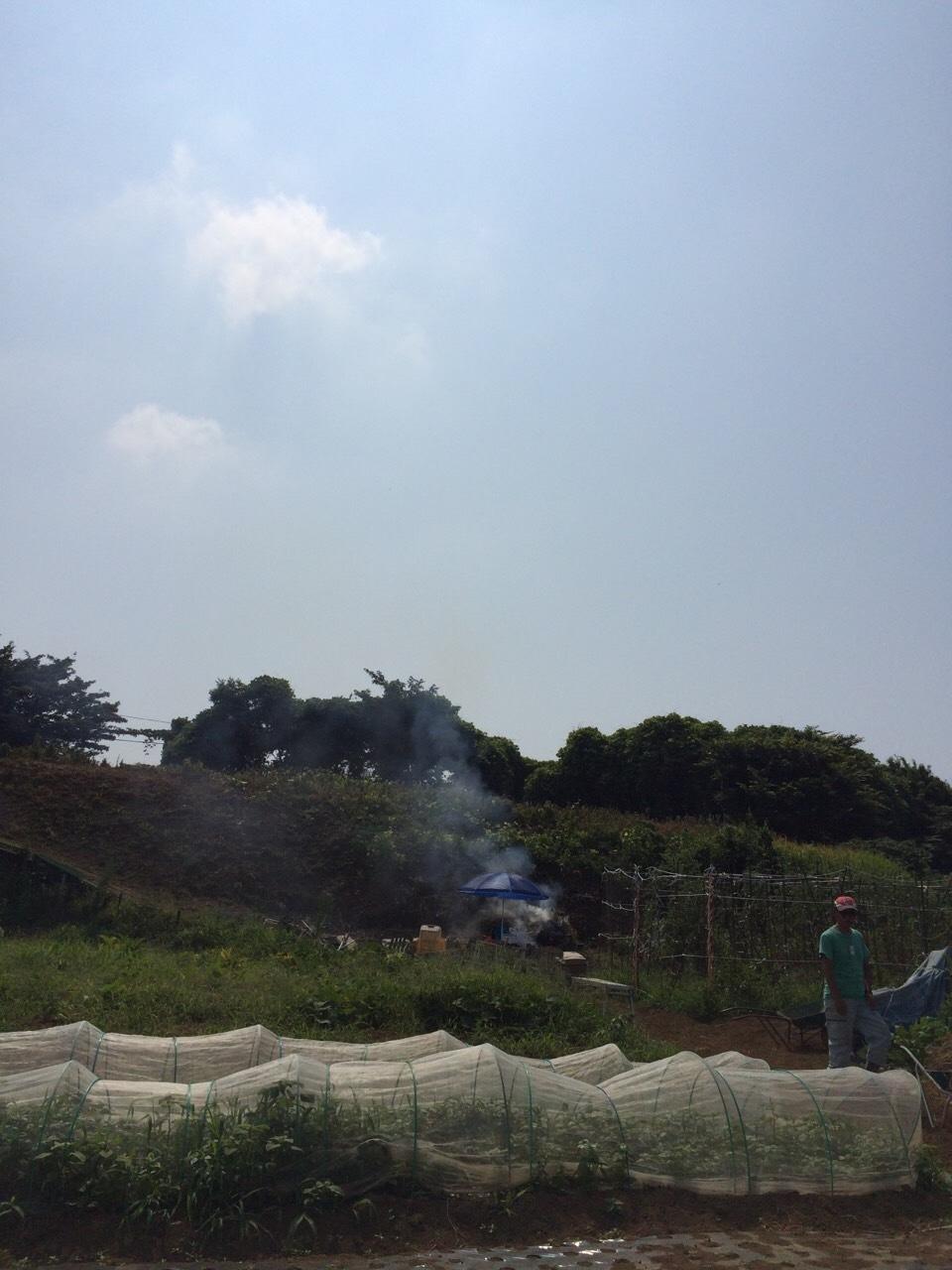 今朝は 石川さん 田中さん 飯田の3名です 刈った草達を燃やしていきます_c0222448_11531340.jpg
