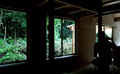 雨の森がよく似合う_a0180552_16225818.jpg
