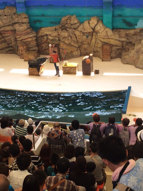 鳥羽水族館速報_b0296154_13464642.jpg