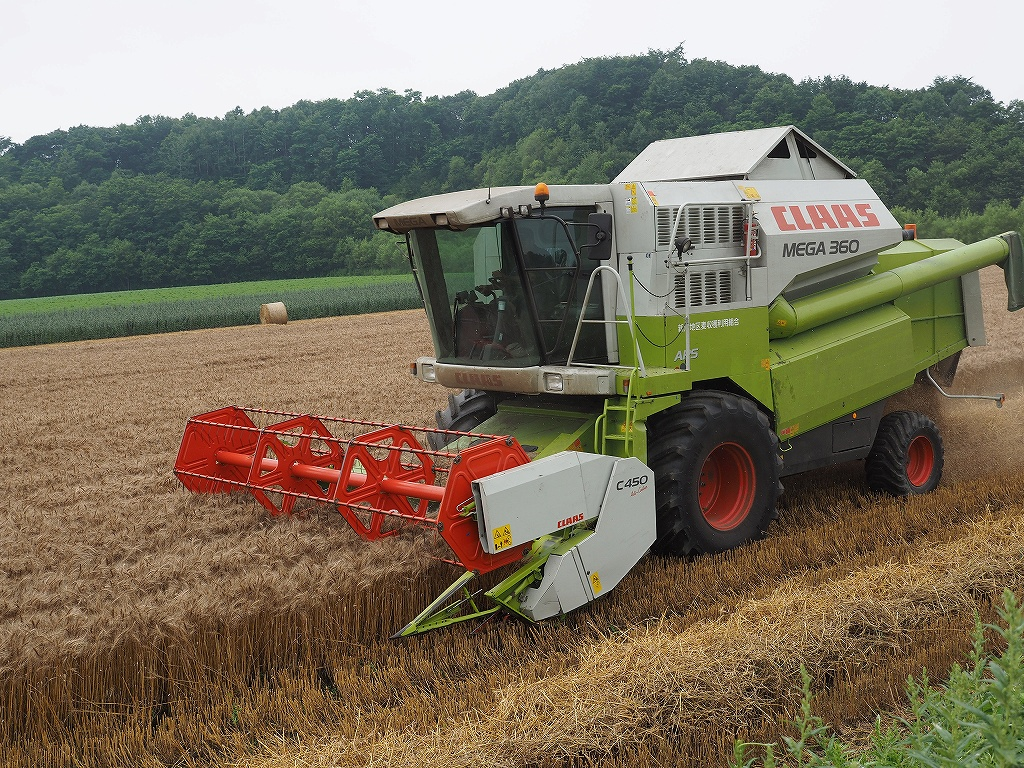 麦の収穫作業_f0138096_135142100.jpg