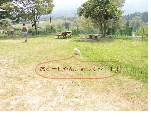 f0049124_1917058.jpg