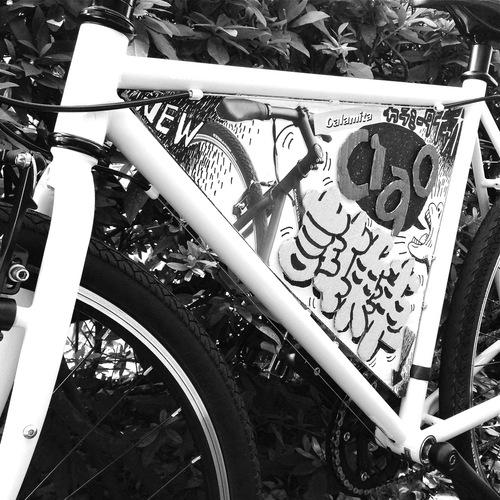 ☆試乗車あります☆「 Calamita CIAO 」 カラミータ チャオ おしゃれ自転車 クロスバイク 26 自転車ガール_b0212032_21201616.jpg