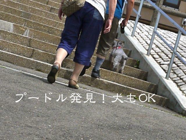 c0190940_20133889.jpg