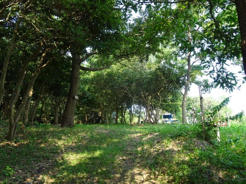 平成27年8月度うみべの森を育てる会運営委員会_c0108460_15411498.jpg