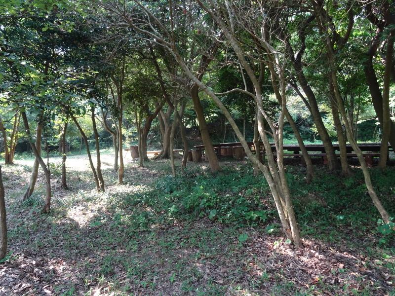 平成27年8月度うみべの森を育てる会運営委員会_c0108460_15411734.jpg